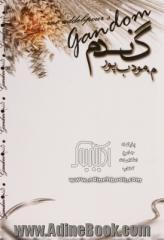 گندم نوشته مودب پور
